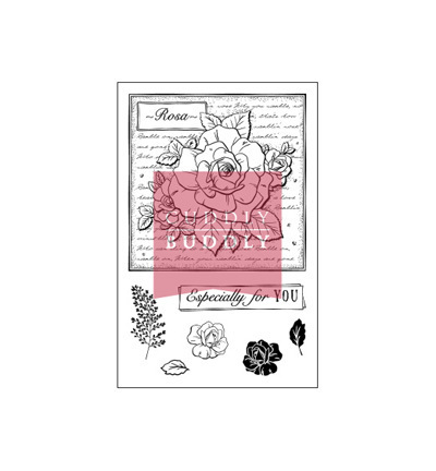 "*Cuddly Buddly Clear Stamps ""Rose College"""
